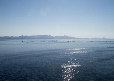 Isla San Pedro Nolasco